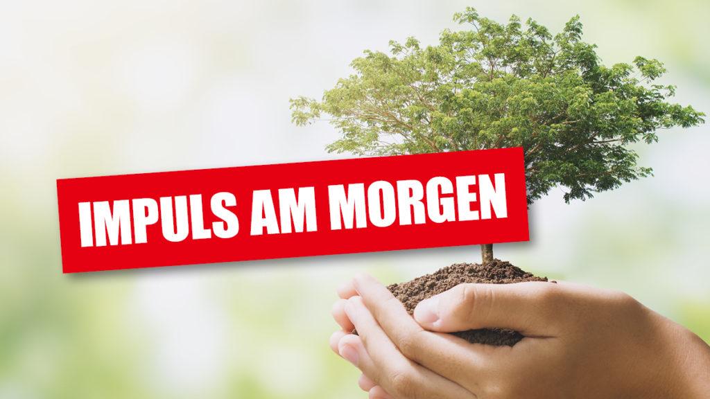 Impuls_am_Morgen_